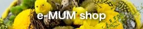 e-MUM shop